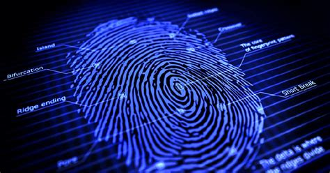 Forensic Investigations Using Thermography and Steam